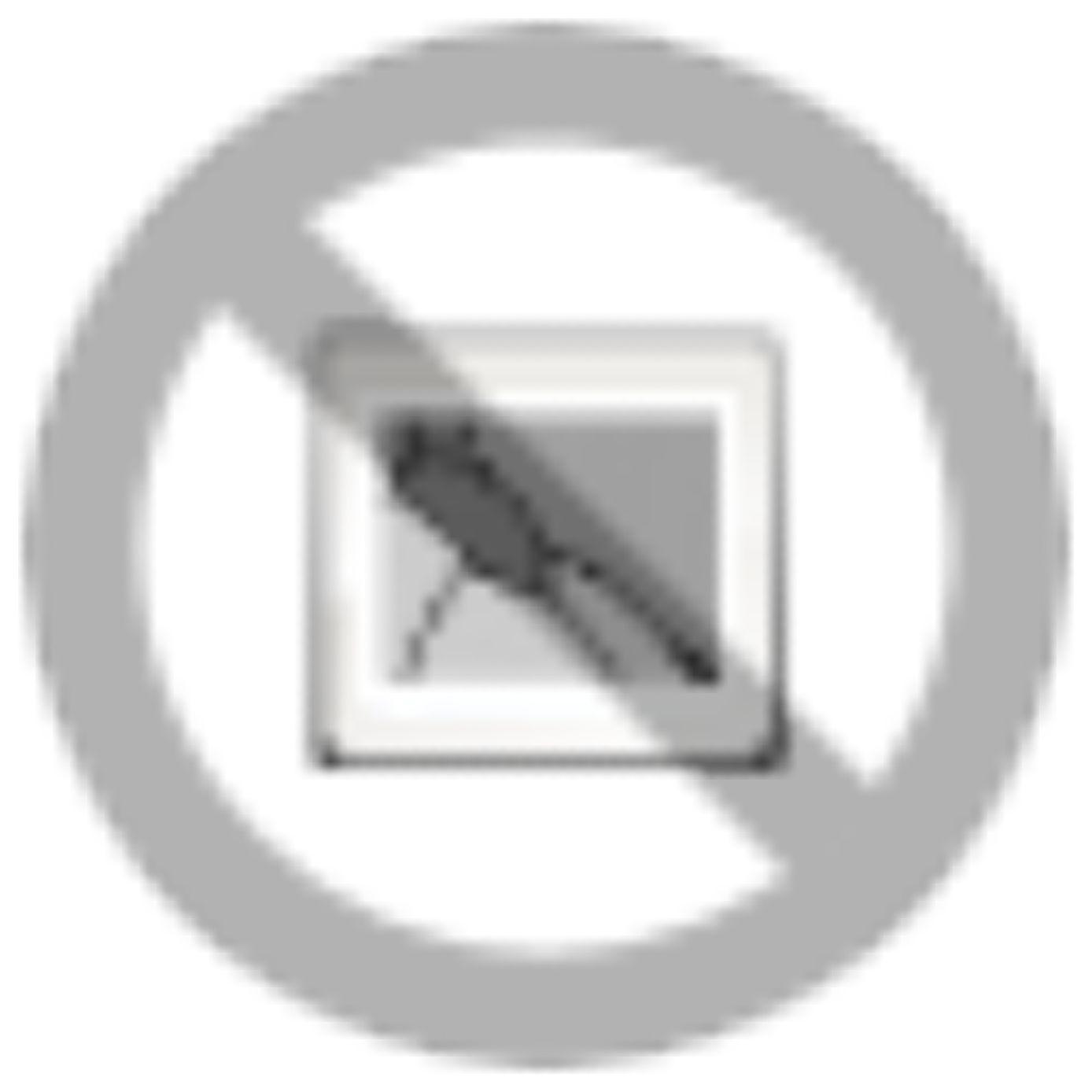 Schnelle und hochpräzise Beschriftung ‒ Klippon® Automated RailLaser